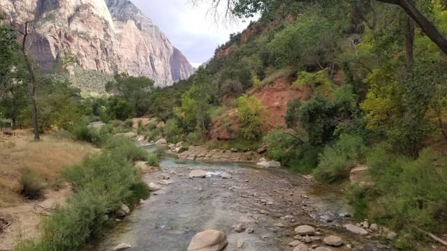 Parc national de Zion avec la Virgin river