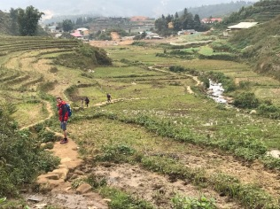 Les rizières de Sapa - Vietnam