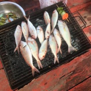 Les poissons pêchés